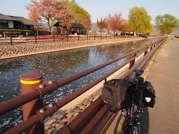 2012_04302012春信州0042-1.JPG