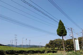2012_10092012秋人吉・肥薩線0058.JPG